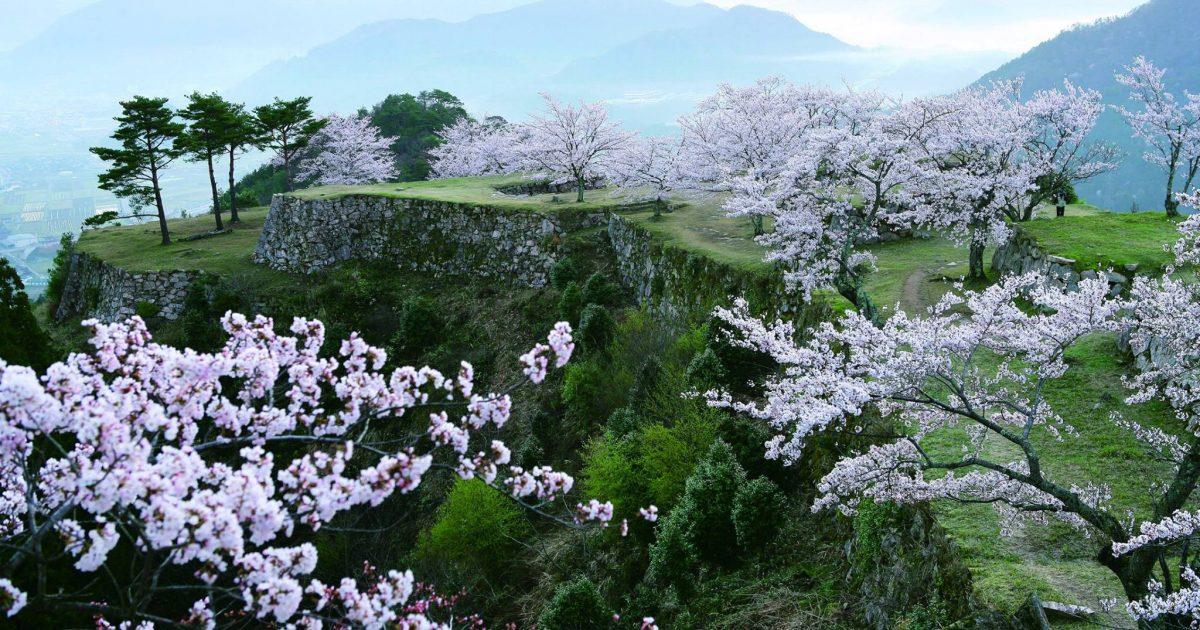 春の竹田城跡